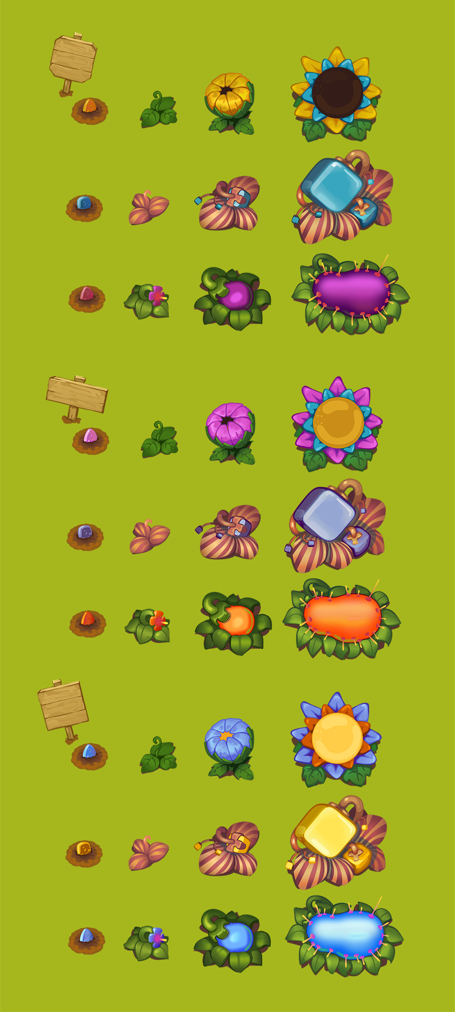 Этапы роста цветка в картинках 6
