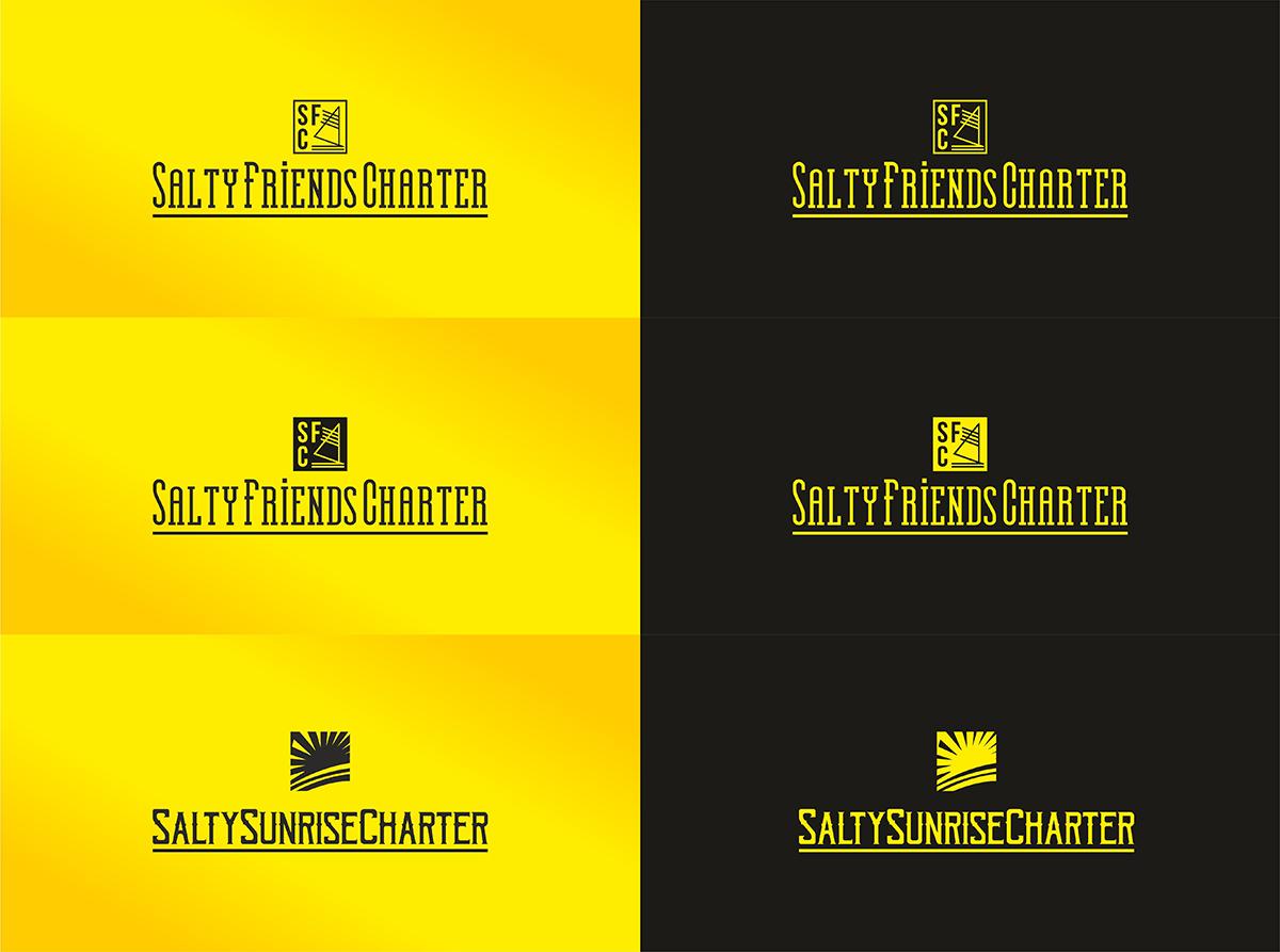 Разработка логотипа и наименования для чартерной компании  фото f_2085a93d9448a295.jpg