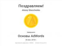 """Сертификат """"Основы AdWords"""" (действующий)"""