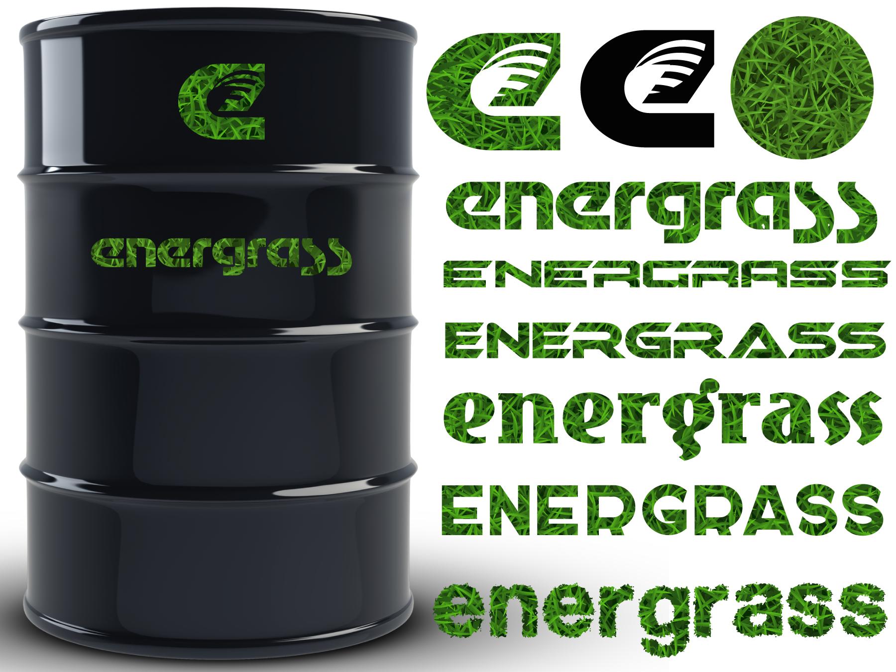 Графический дизайнер для создания логотипа Energrass. фото f_6865f903f681c52f.png