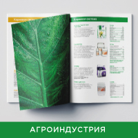 Оазис каталог