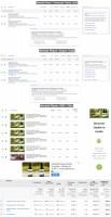 Травяные настойки для здоровья, похудения и от старения - Адвордс / CTR до 6% / Конверсионность до 9% / Англоязычный