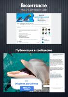 Дельфинарий в Адлере / Вконтакте