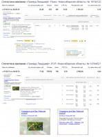 Ландшафтный дизайн - Директ+Адвордс / CTR 11%