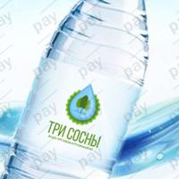 Логотип+Этикетка: 3 Сосны