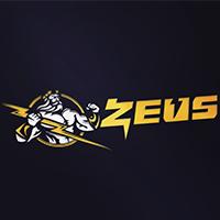 Логотип: PlayZeus.org