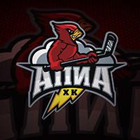 Логотип: Хоккейная команда АПИА