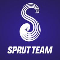 Логотипа: SPRUT TEAM