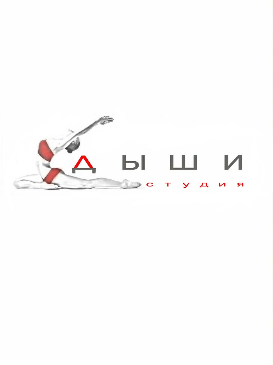 """Логотип для студии """"Дыши""""  и фирменный стиль фото f_38356f43398dc9aa.jpg"""