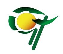Логотип для Cash & IT - сервис доставки денег фото f_8675fda393fc81c5.jpg