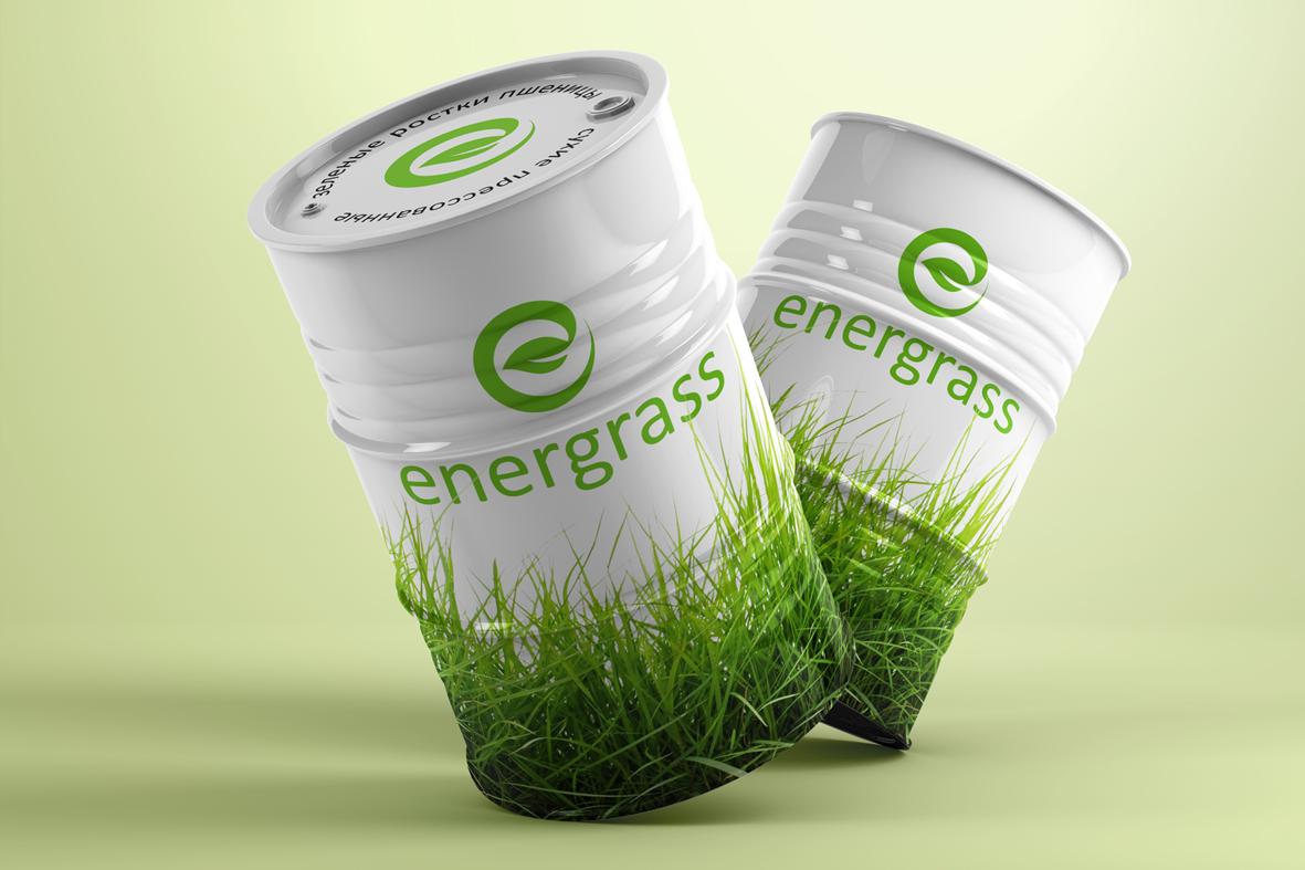 Графический дизайнер для создания логотипа Energrass. фото f_1085f8987bc22fa4.jpg