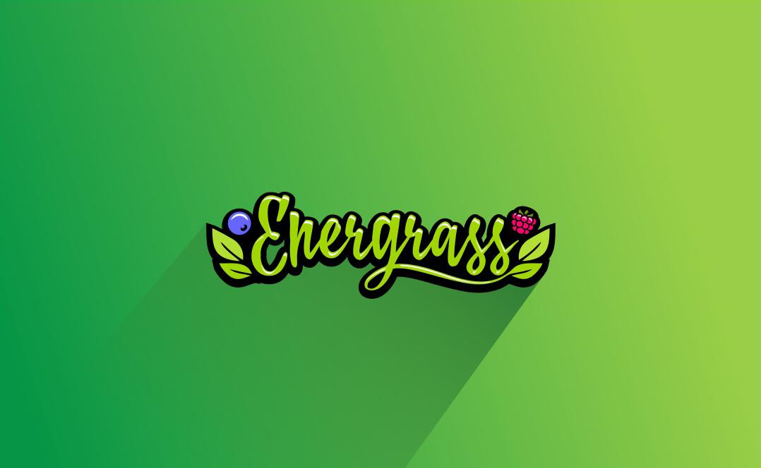 Графический дизайнер для создания логотипа Energrass. фото f_6575f89998c8393f.jpg