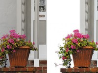 Обтравка, цветокоррекция, кадрирование, придание тени, 1 фото = 40 руб, 10...