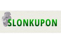 Сайт скидок СлонКупон