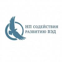 НП содействия развитию ВЭД. Неправительственная организация.