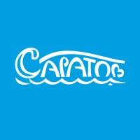Саратов, туристический логотип области. Финалист Золотая блоха 2015