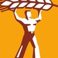 """""""Колосс"""", название, логотип и буклет для торгового дома"""