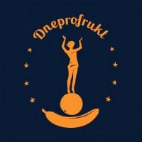 Днепрофрукт, логотип для международной торговой компании