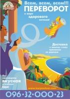 """листовка-плакат  """"Карпов Дворъ"""" 2"""