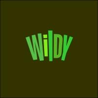 Wildy. Лого для интернет-проекта