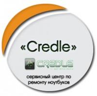"SEO продвижение компании ""Credle"""
