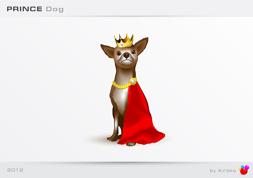 PRINCE Dog