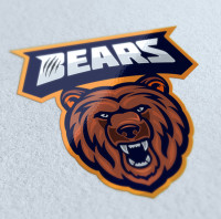 "Разработка логотипа эмблемы ""BEARS"""