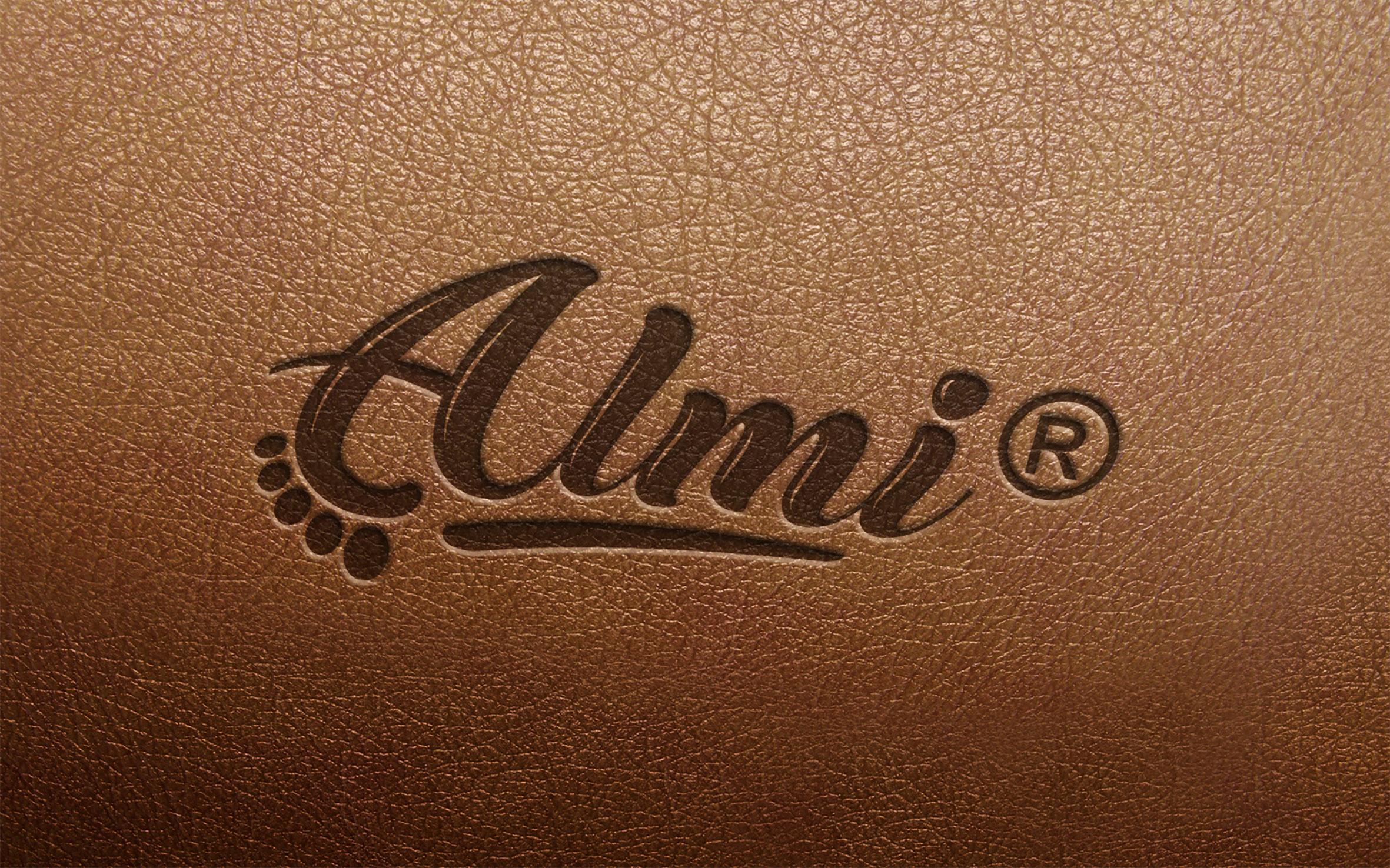 Дизайн логотипа обувной марки Алми фото f_13459f2e3efb04a8.jpg