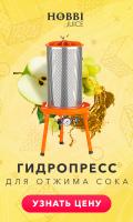 Рекламные баннеры РСЯ / AdWords