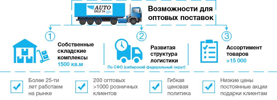 AUTOSALE54 / 2 блока инфографики для разделов сайта
