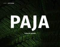 Студия веб-разработки PAJA