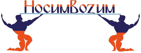 Логотип компании по перевозкам НосимВозим фото f_8525cf80d2bdf0ee.png