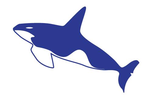 Разработка фирменного символа компании - касатки, НЕ ЛОГОТИП фото f_5195b024ff272bd6.jpg