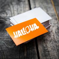 Название домена компании по реализации смартфонов и аксессуаров HALLOHA