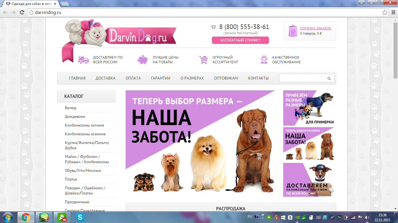 Создать логотип для интернет магазина одежды для собак фото f_45156522b2b3cb98.jpg