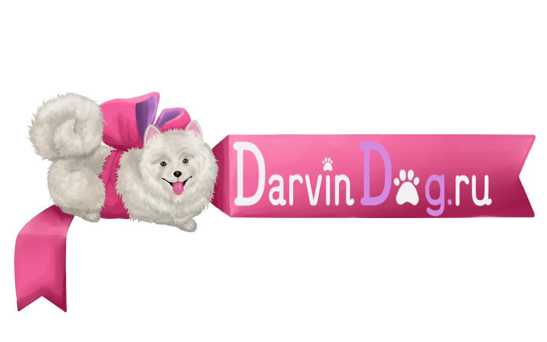 Создать логотип для интернет магазина одежды для собак фото f_98556522aea6703b.jpg