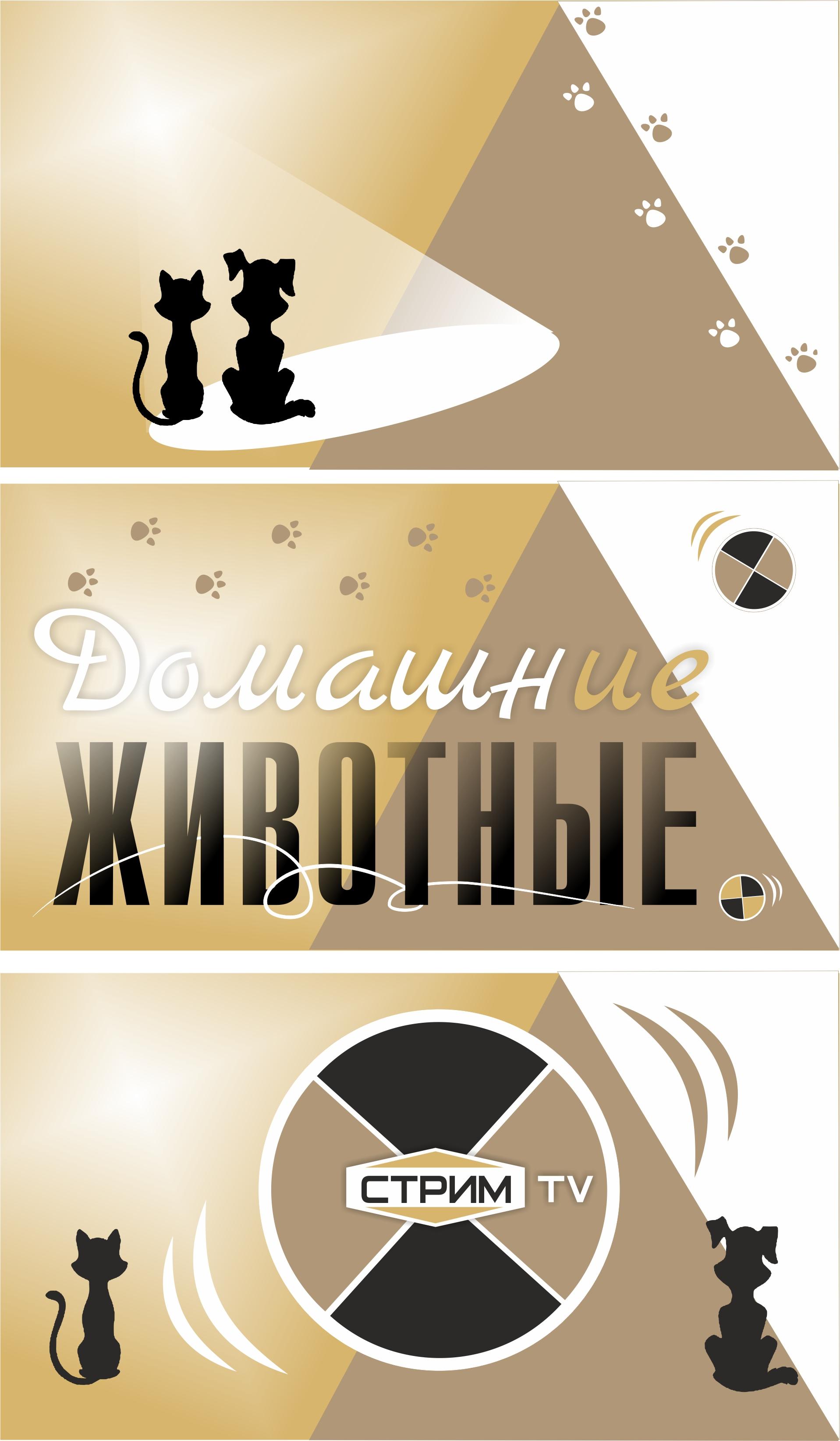 Создание концепции заставки и логотипа (телеканал) фото f_493566ec5465e795.jpg