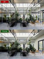 Сложная ретушь фотографии, убирание стеклянных перегородок зимнего сада в фойе бизнес центра