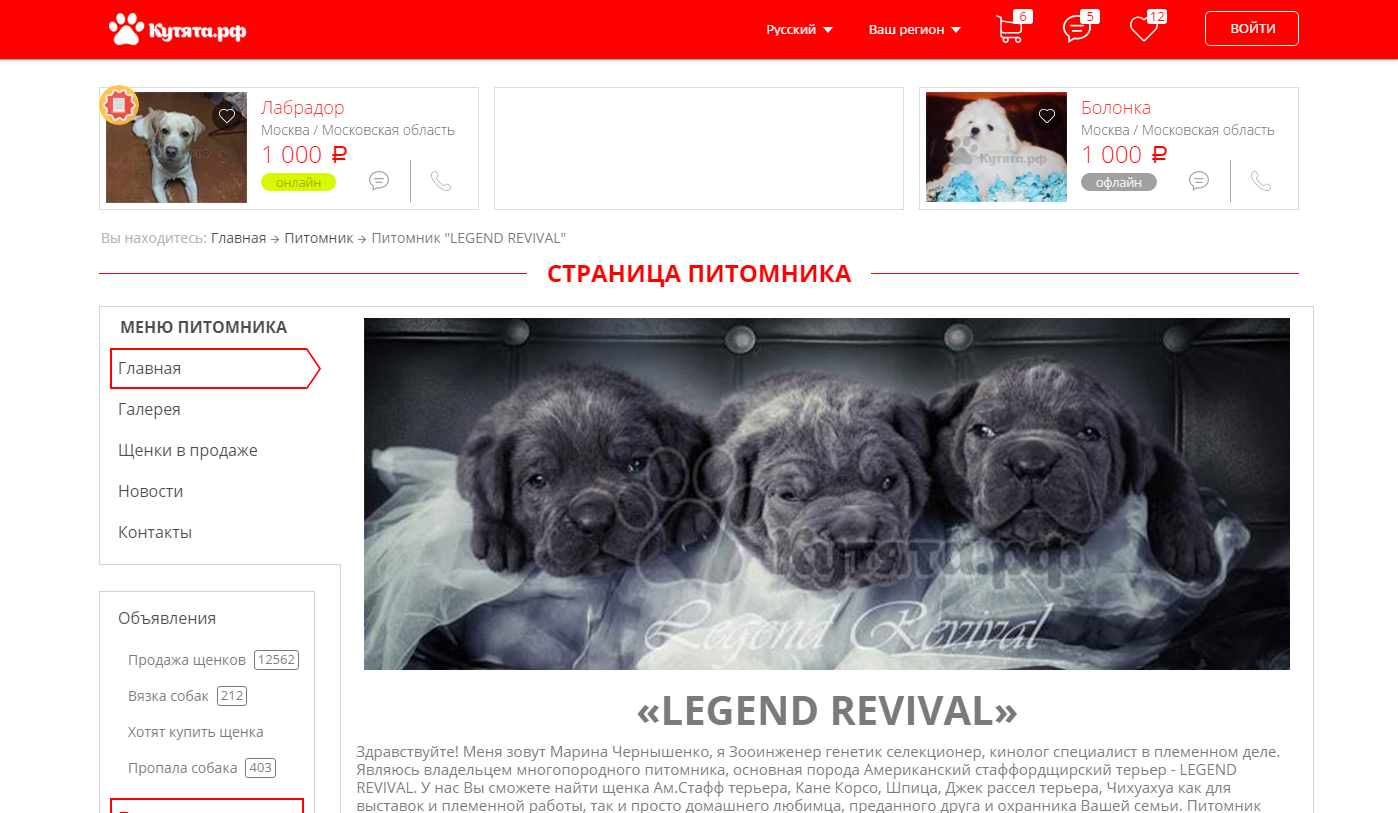 Кутяфа.рф - адаптивная верстка портала обьявлений
