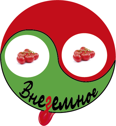 """Логотип и фирменный стиль """"Внеземное"""" фото f_2985e74bf23e34a6.png"""