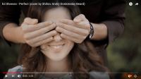 Видеоклип на cover песню Ed Sheeran - Perfect (cover by Shihov Andry Dostoevsky Beard)