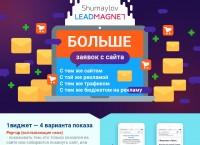 Инфографика для LEADMAGNET