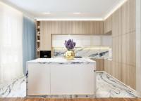 БАРХАТ. Кухня - столовая - гостиная. 47 м2. Ракурс 1