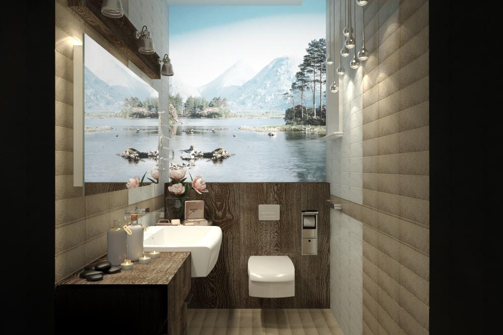 Дизайн санузла загородного дома