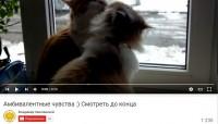 Амбивалентные чувства :)    youtube