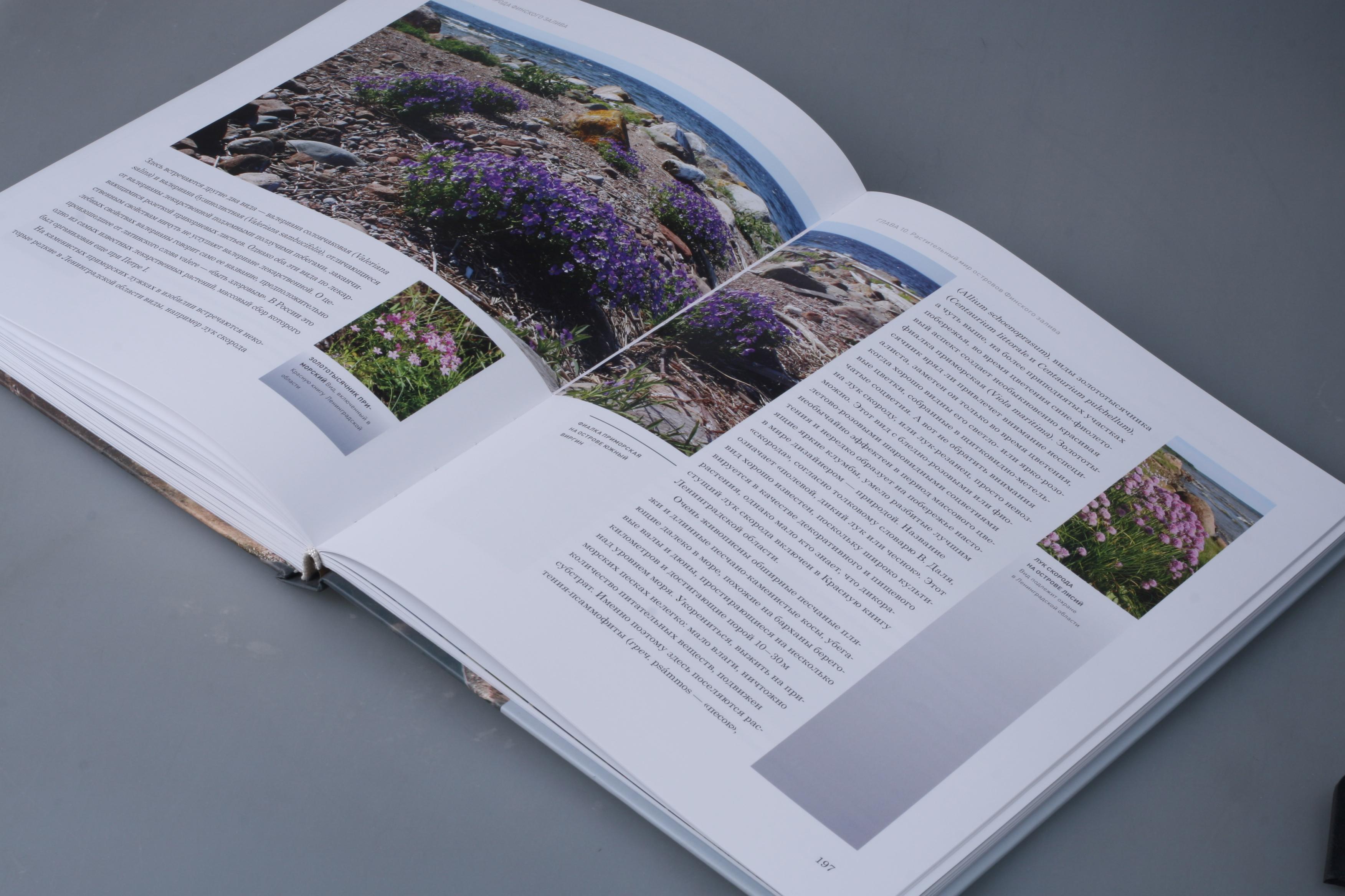 """книга """"Финский залив. Акватория гармонии"""". Верстка, дизайн"""
