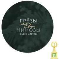 Грезы Мимозы (конкурс 1 место)
