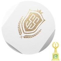 SS финансовая компания ( конкурс 1 место)