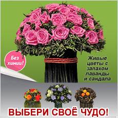Баннер - Цветы