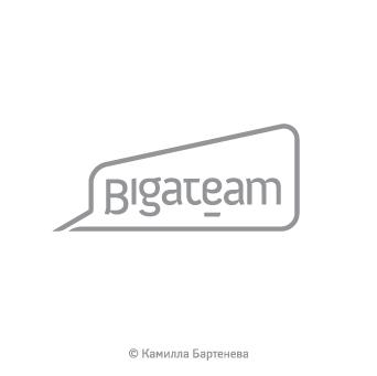 BigaTeam. Интернет-агентство.